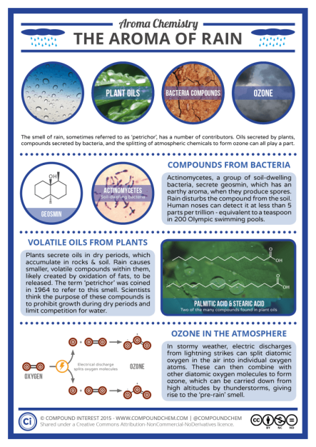 Infographic for Aroma Chemistry: The Aroma of Rain